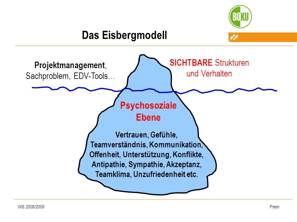 WS 2008/2009Prem Psychosoziale Ebene SICHTBARE Strukturen und Verhalten Vertrauen, Gefühle, Teamverständnis, Kommunikation, Offenheit, Unterstützung,