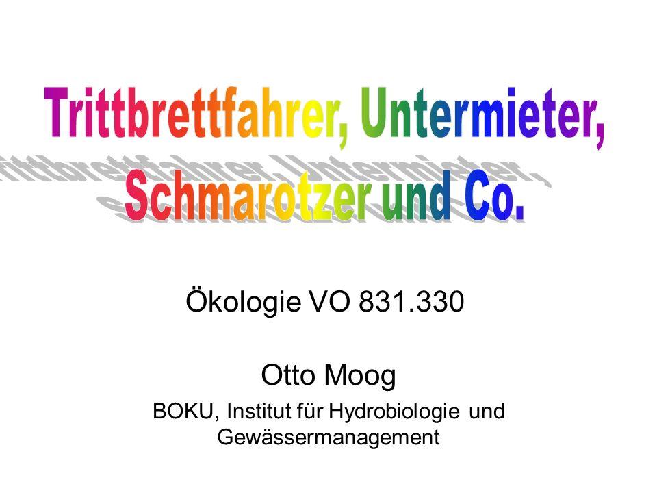 Otto Moog BOKU, Institut für Hydrobiologie und Gewässermanagement Ökologie VO 831.330