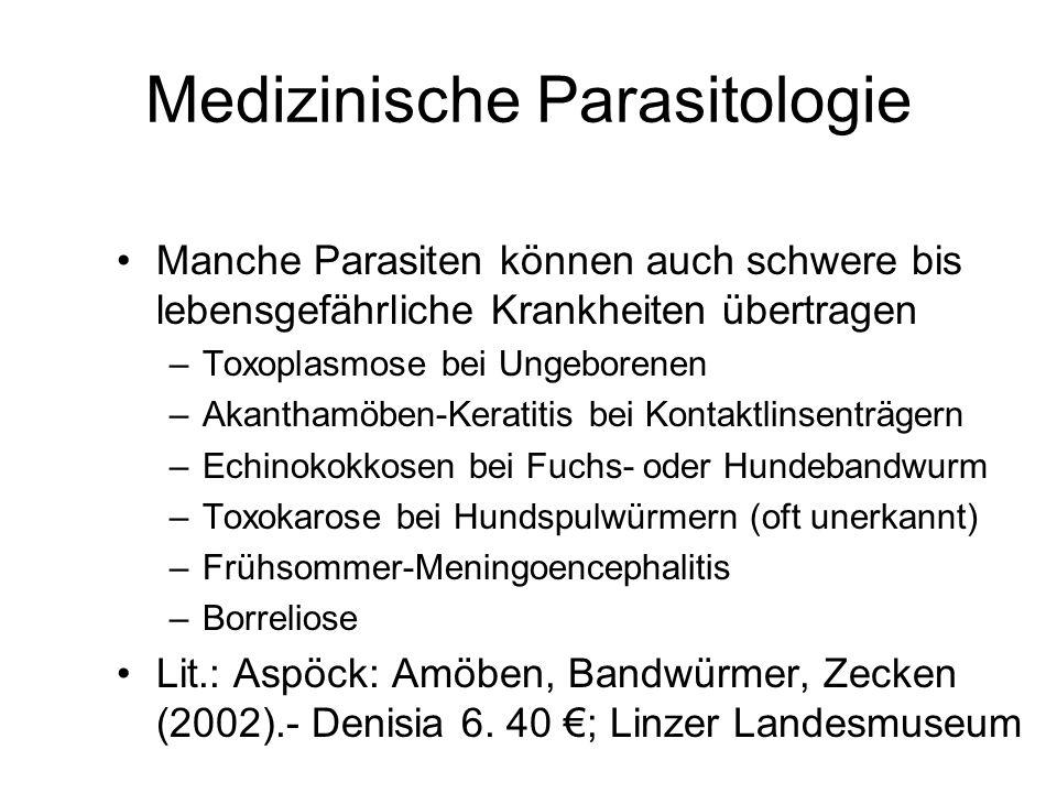 Medizinische Parasitologie Manche Parasiten können auch schwere bis lebensgefährliche Krankheiten übertragen –Toxoplasmose bei Ungeborenen –Akanthamöb