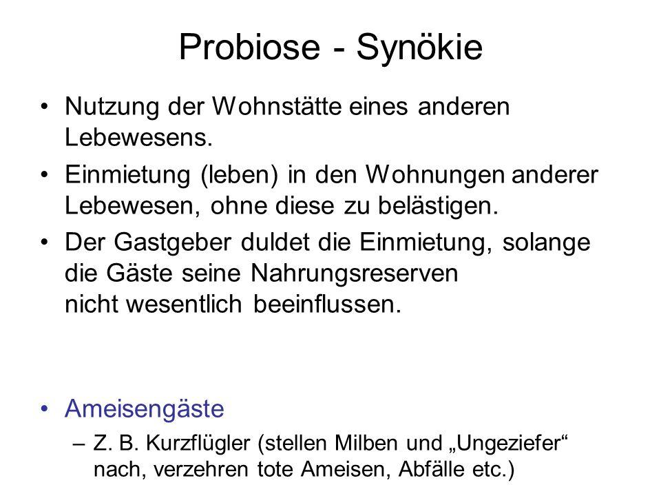 Probiose - Synökie Nutzung der Wohnstätte eines anderen Lebewesens. Einmietung (leben) in den Wohnungen anderer Lebewesen, ohne diese zu belästigen. D