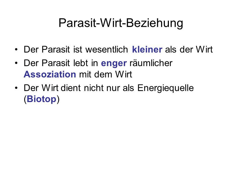 Parasit-Wirt-Beziehung Der Parasit ist wesentlich kleiner als der Wirt Der Parasit lebt in enger räumlicher Assoziation mit dem Wirt Der Wirt dient ni