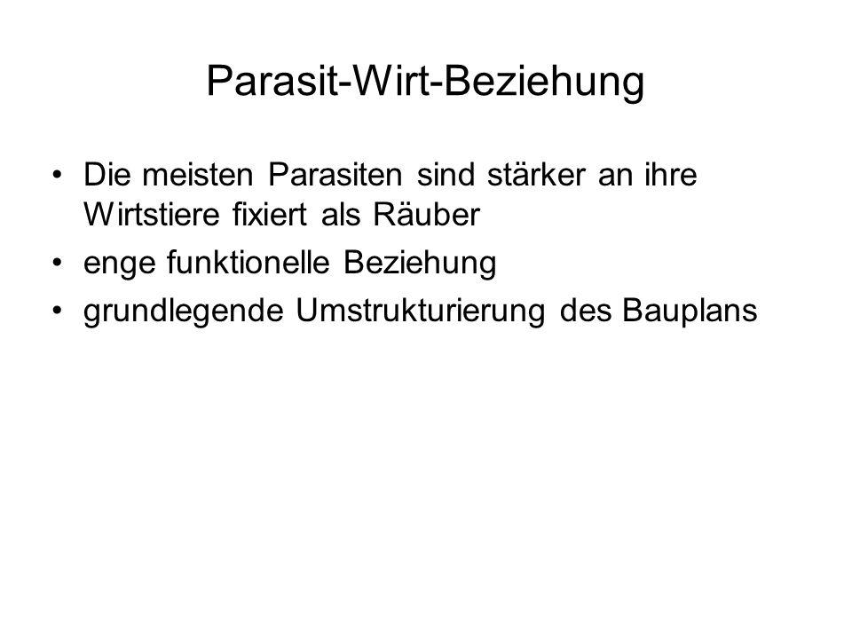 Parasit-Wirt-Beziehung Die meisten Parasiten sind stärker an ihre Wirtstiere fixiert als Räuber enge funktionelle Beziehung grundlegende Umstrukturier