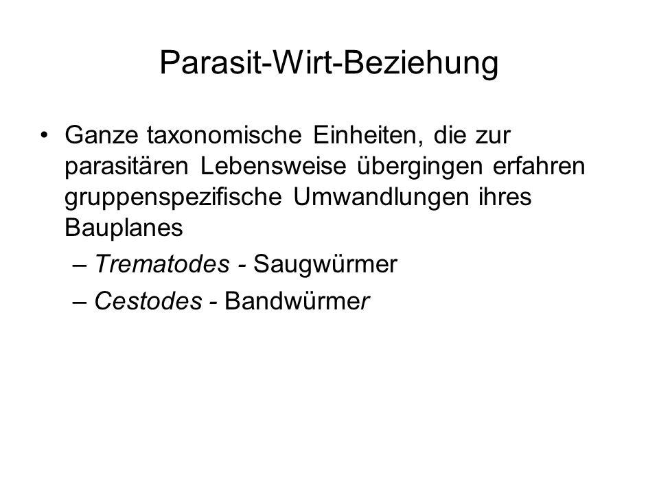 Parasit-Wirt-Beziehung Ganze taxonomische Einheiten, die zur parasitären Lebensweise übergingen erfahren gruppenspezifische Umwandlungen ihres Bauplan