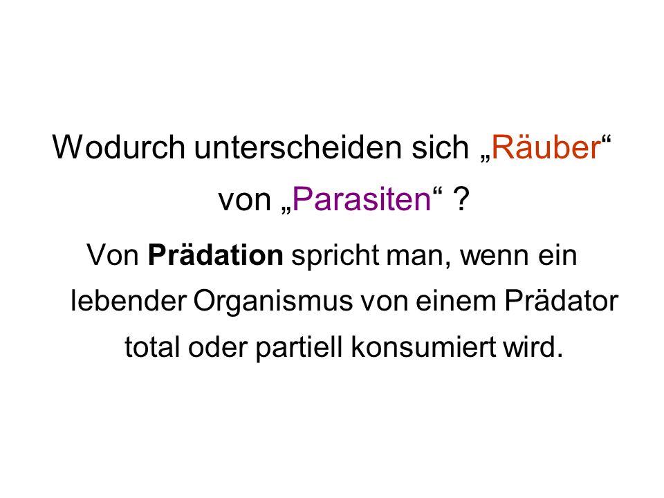Wodurch unterscheiden sich Räuber von Parasiten ? Von Prädation spricht man, wenn ein lebender Organismus von einem Prädator total oder partiell konsu