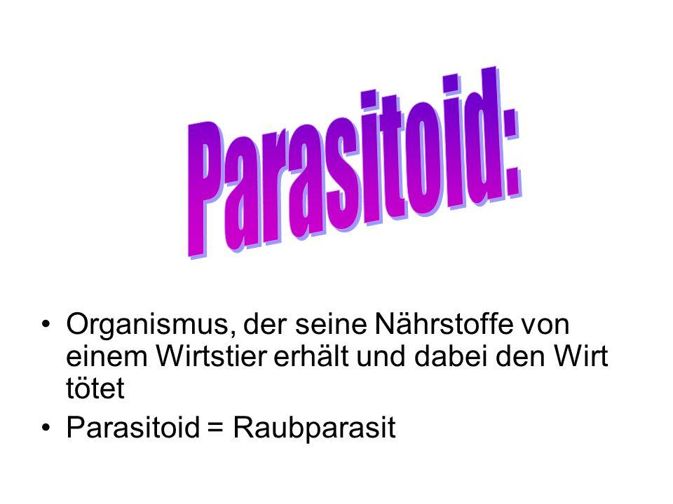 Organismus, der seine Nährstoffe von einem Wirtstier erhält und dabei den Wirt tötet Parasitoid = Raubparasit