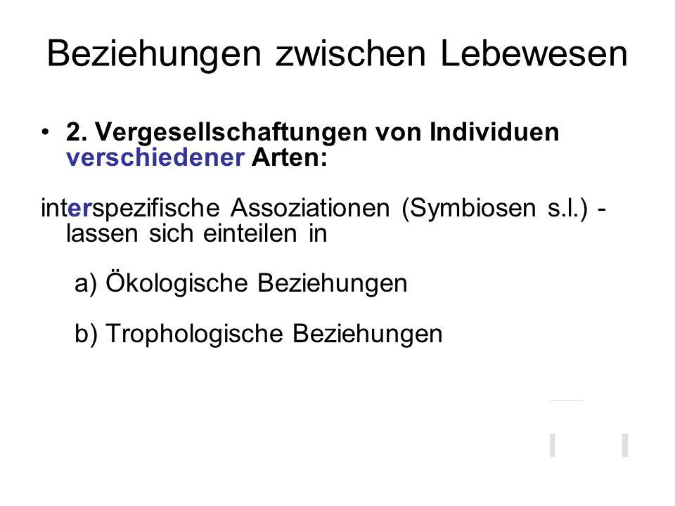 Beziehungen zwischen Lebewesen 2. Vergesellschaftungen von Individuen verschiedener Arten: interspezifische Assoziationen (Symbiosen s.l.) - lassen si