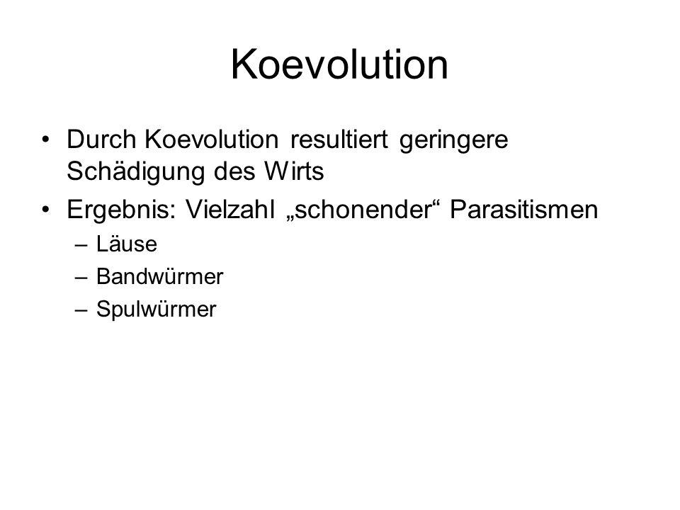 Koevolution Durch Koevolution resultiert geringere Schädigung des Wirts Ergebnis: Vielzahl schonender Parasitismen –Läuse –Bandwürmer –Spulwürmer