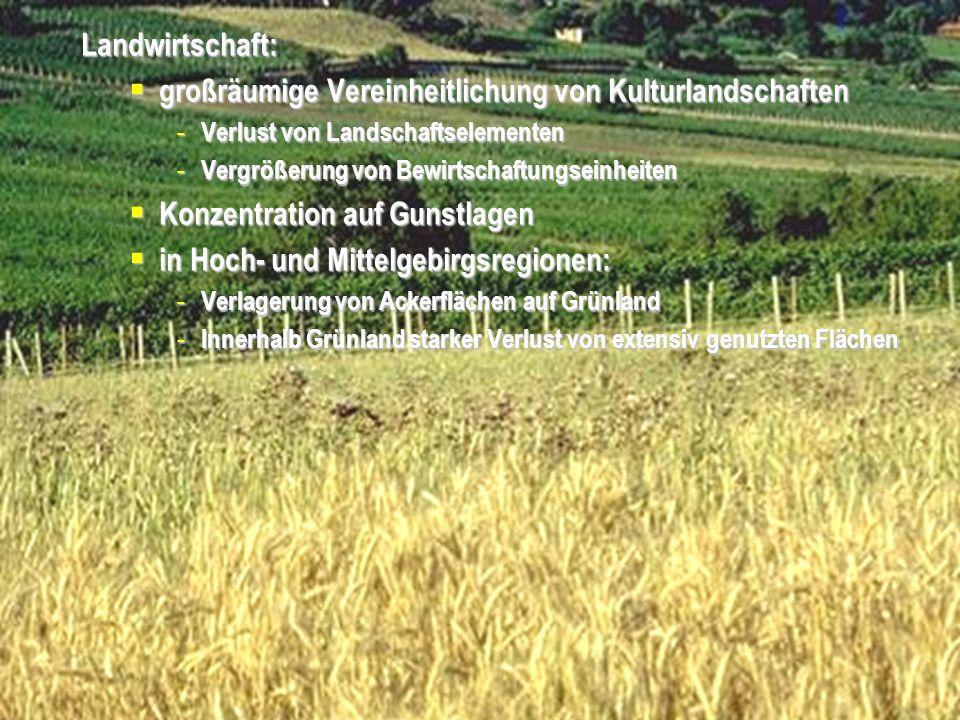 Universität für Bodenkultur Wien Department für Raum, Landschaft und Infrastruktur IRUB VO Raumordnung, Recht- und Planungsinstrumente Folie 6 Aufforstung landwirtschaftlicher Nutzflächen Zerwaldung der Landschaft