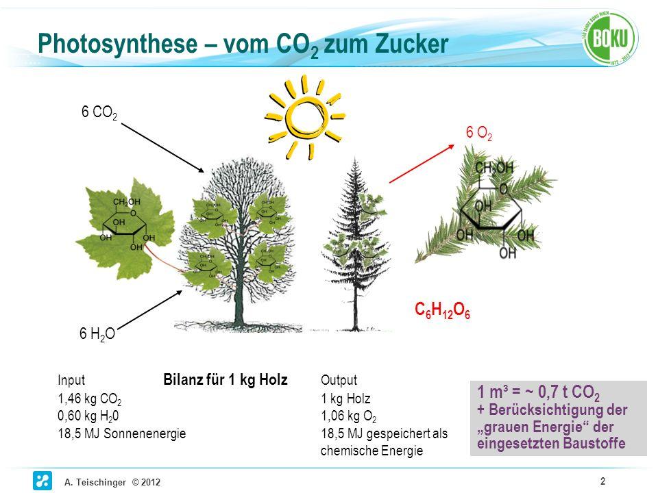 A. Teischinger © 2012 2 Photosynthese – vom CO 2 zum Zucker 6 CO 2 6 H 2 O C 6 H 12 O 6 Input Bilanz für 1 kg Holz Output 1,46 kg CO 2 1 kg Holz 0,60
