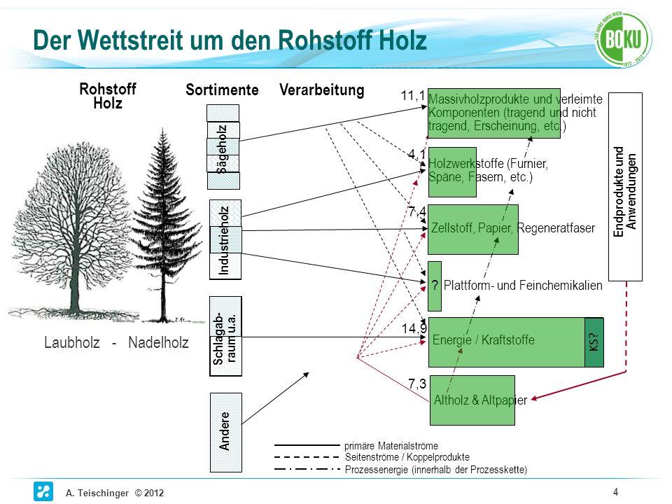 A. Teischinger © 2012 4 Der Wettstreit um den Rohstoff Holz Massivholzprodukte und verleimte Komponenten (tragend und nicht tragend, Erscheinung, etc.
