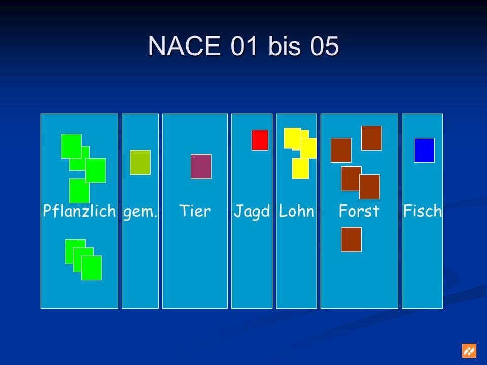 Forst NACE 01 bis 05 PflanzlichJagdFischgem.TierLohn