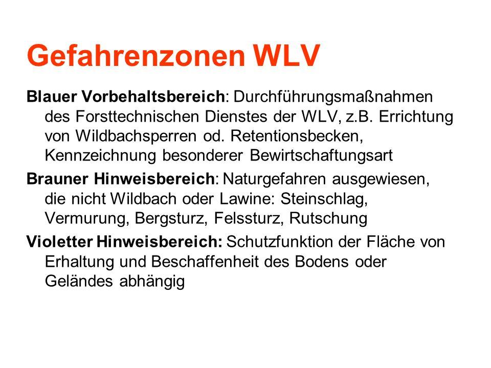 Gefahrenzonen WLV Blauer Vorbehaltsbereich: Durchführungsmaßnahmen des Forsttechnischen Dienstes der WLV, z.B. Errichtung von Wildbachsperren od. Rete