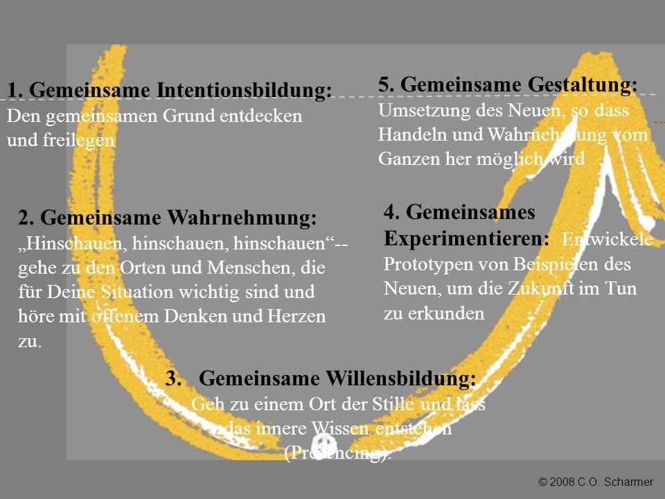 © 2008 C.O. Scharmer 3.Gemeinsame Willensbildung: Geh zu einem Ort der Stille und lass das innere Wissen entstehen (Presencing). 4. Gemeinsames Experi