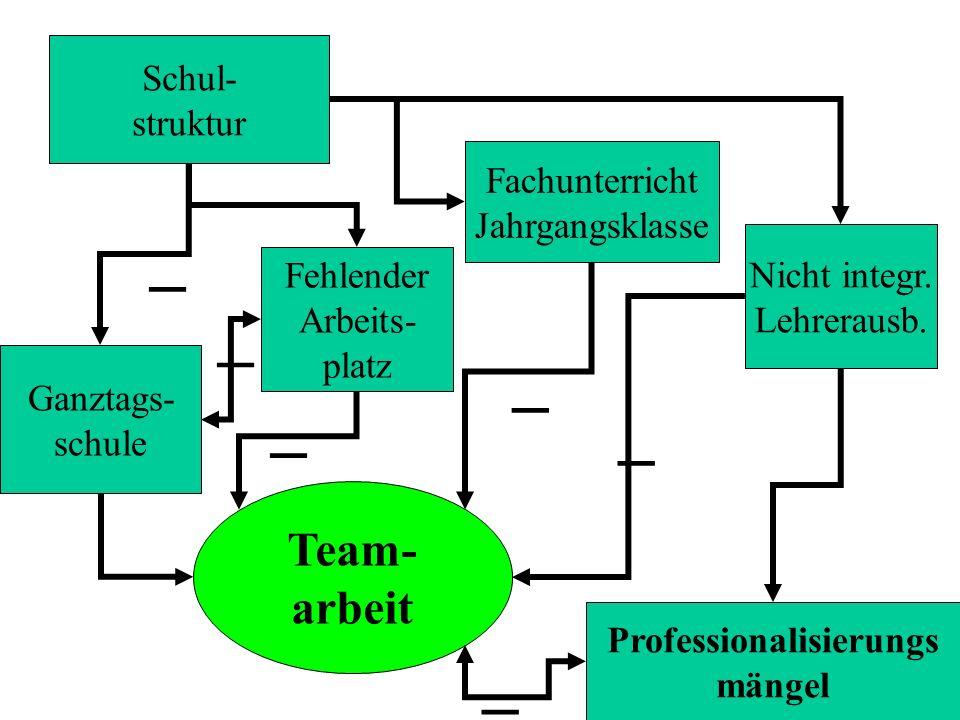 Schul- struktur Team- arbeit Nicht integr. Lehrerausb. Fachunterricht Jahrgangsklasse Professionalisierungs mängel Ganztags- schule Fehlender Arbeits-