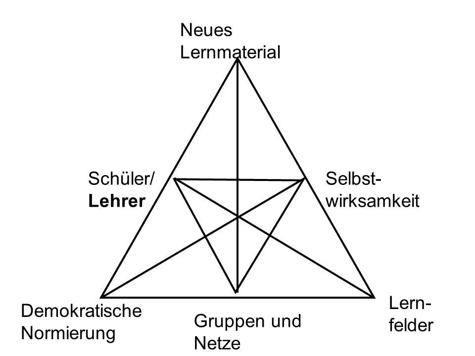 Schüler/ Lehrer Demokratische Normierung Lern- felder Gruppen und Netze Neues Lernmaterial Selbst- wirksamkeit