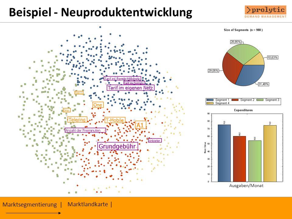 Beispiel - Neuproduktentwicklung Marktsegmentierung | Ausgaben/Monat Marktlandkarte |