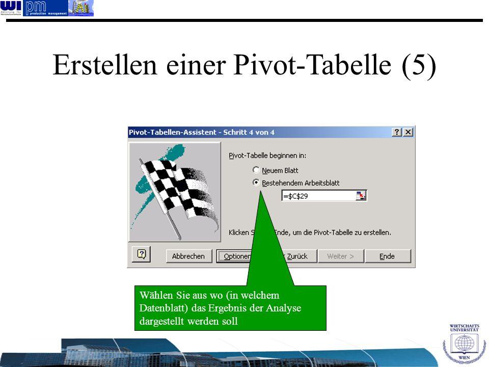 Wählen Sie aus wo (in welchem Datenblatt) das Ergebnis der Analyse dargestellt werden soll Erstellen einer Pivot-Tabelle (5)