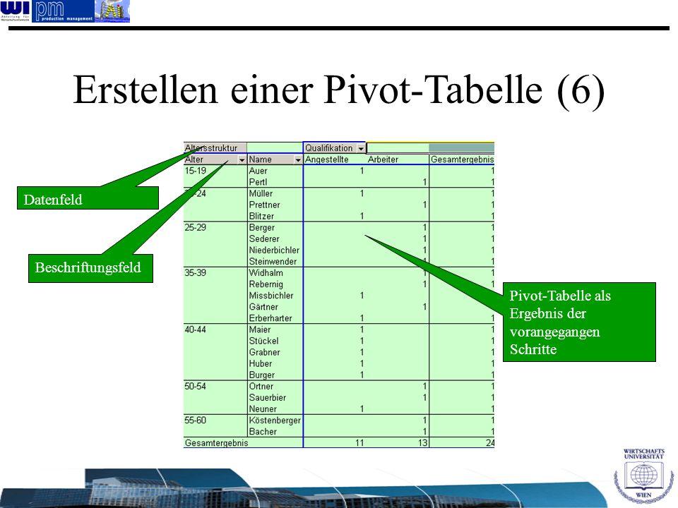 Pivot-Tabelle als Ergebnis der vorangegangen Schritte Erstellen einer Pivot-Tabelle (6) Datenfeld Beschriftungsfeld
