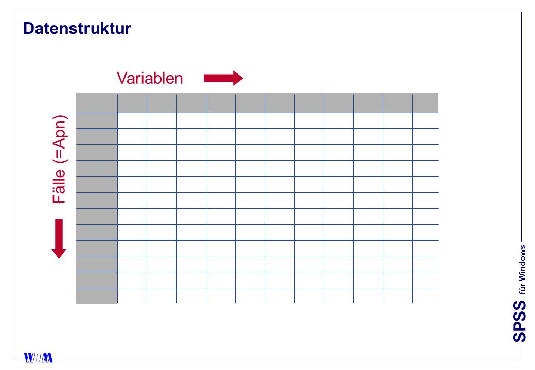SPSS für Windows Datenstruktur Variablen Fälle (=Apn)