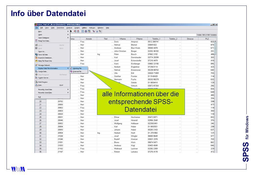 SPSS für Windows Info über Datendatei alle Informationen über die entsprechende SPSS- Datendatei