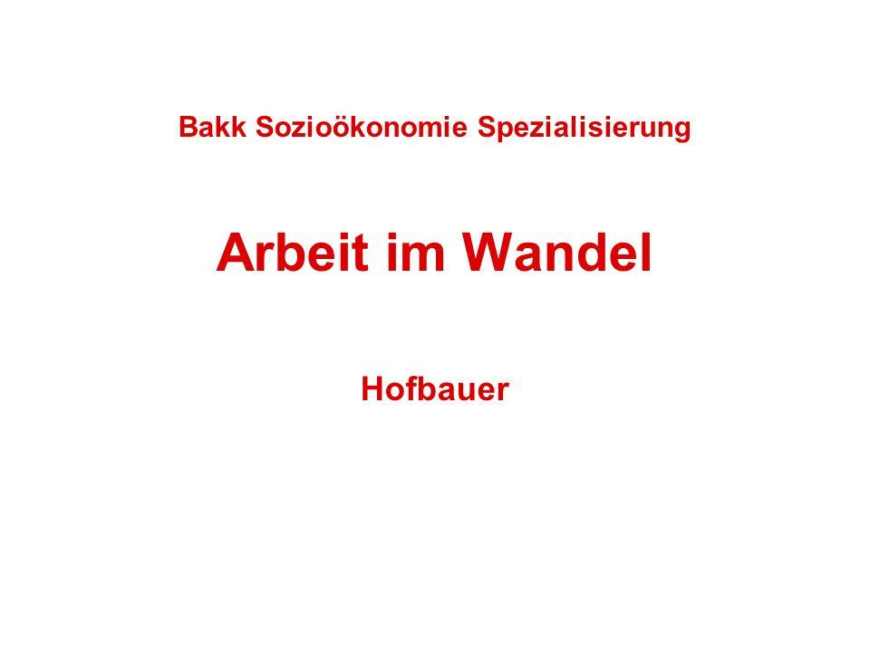 Bakk Sozioökonomie Spezialisierung Arbeit im Wandel Hofbauer