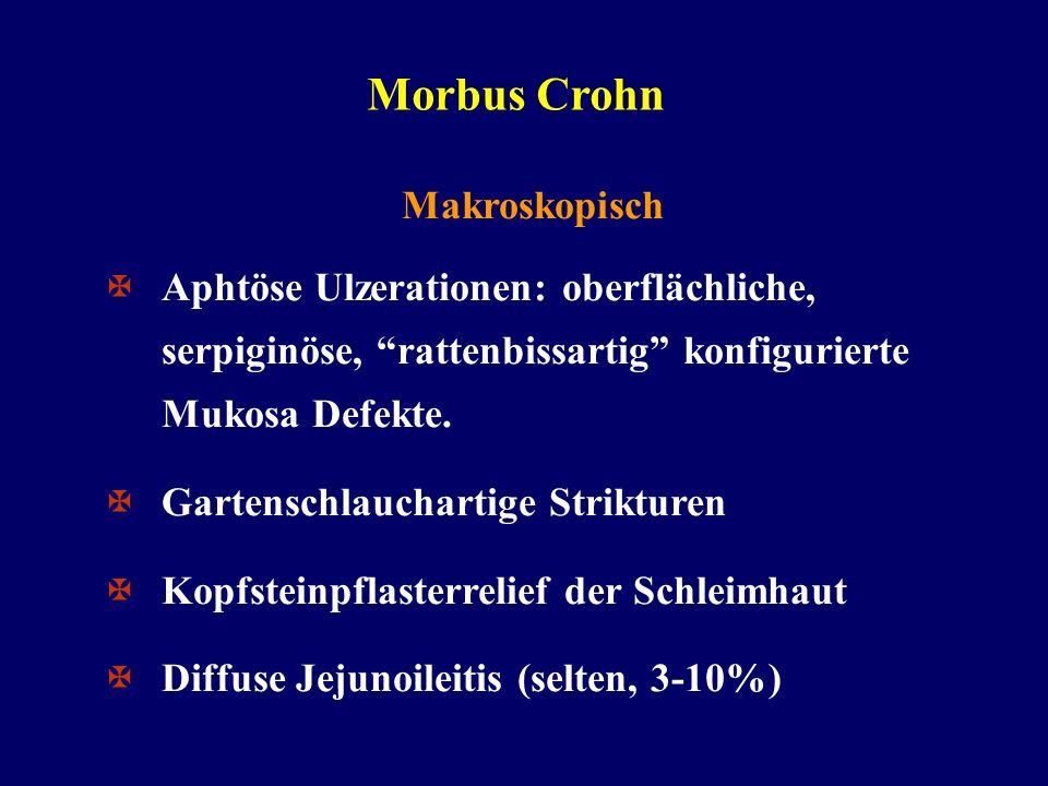 Morbus Crohn Makroskopisch Aphtöse Ulzerationen: oberflächliche, serpiginöse, rattenbissartig konfigurierte Mukosa Defekte. Gartenschlauchartige Strik