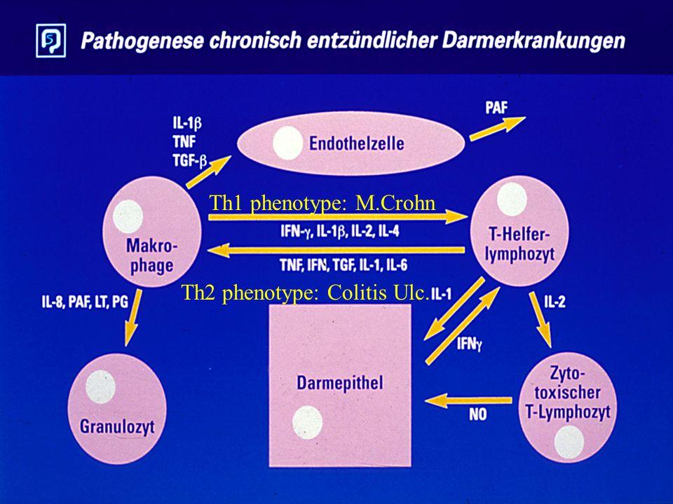 Th1 phenotype: M.Crohn Th2 phenotype: Colitis Ulc.
