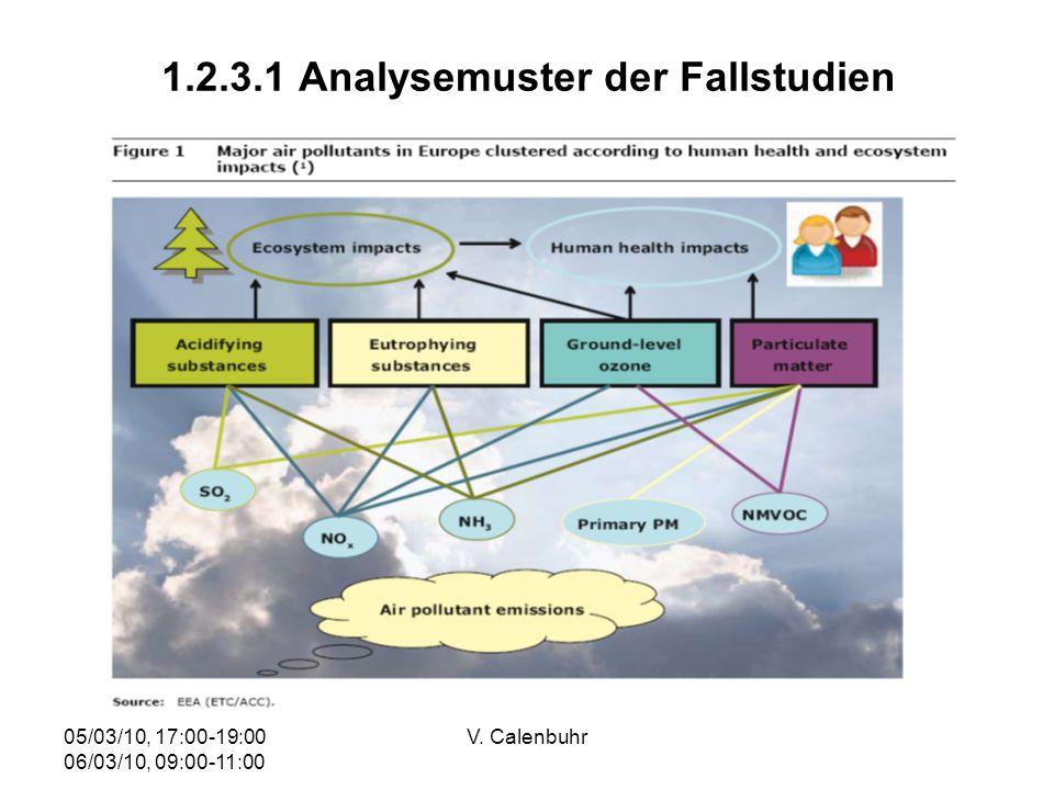 05/03/10, 17:00-19:00 06/03/10, 09:00-11:00 V. Calenbuhr 1.2.3.1 Analysemuster der Fallstudien