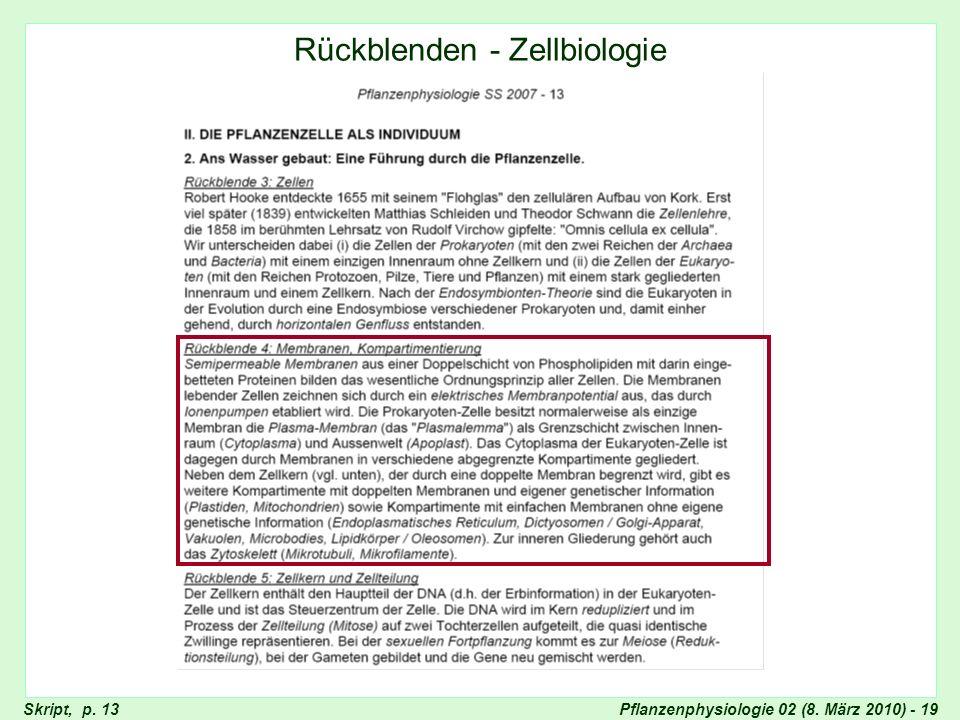 Pflanzenphysiologie 02 (8. März 2010) - 19Skript, p. 13 Rückblenden - Zellbiologie
