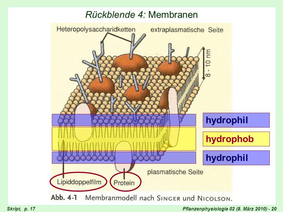 Pflanzenphysiologie 02 (8. März 2010) - 20 Rückblende 4: Membranen Membranmodell, Singer und Nicolson hydrophil hydrophob Skript, p. 17