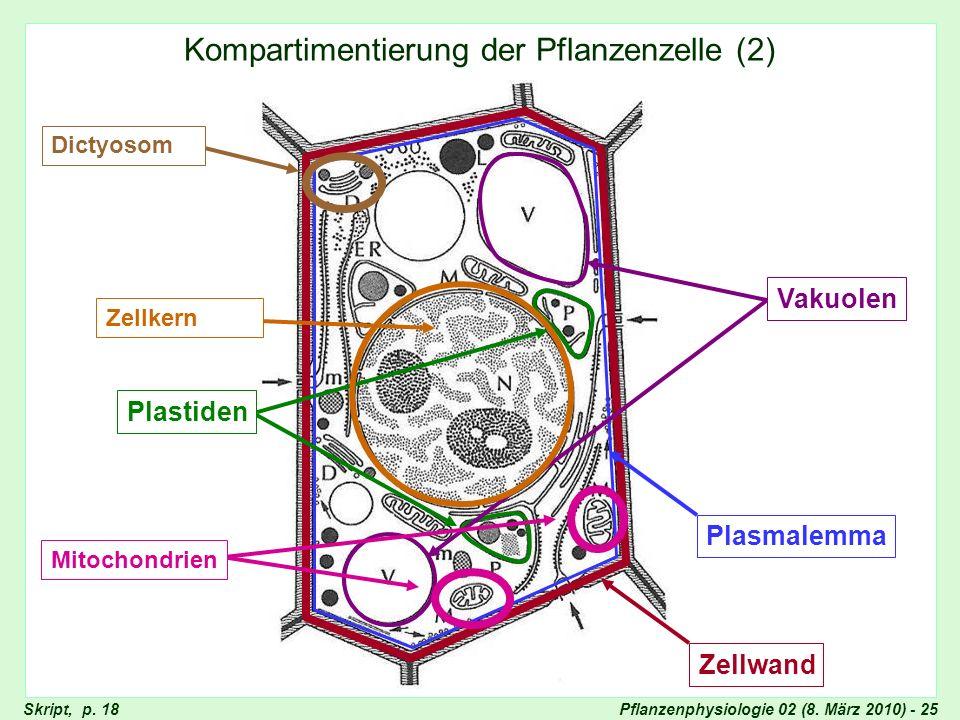 Pflanzenphysiologie 02 (8. März 2010) - 25 Kompartimentierung der Pflanzenzelle (2) ZellwandPlasmalemma Plastiden Vakuolen Skript, p. 18 ZellkernDicty
