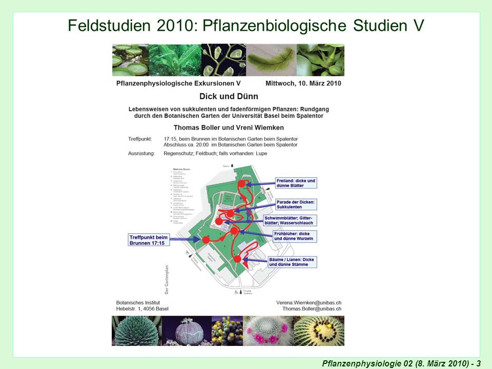 Pflanzenphysiologie 02 (8.März 2010) - 14 Zellen-Quiz 3: Was zeigt dieses Bild.