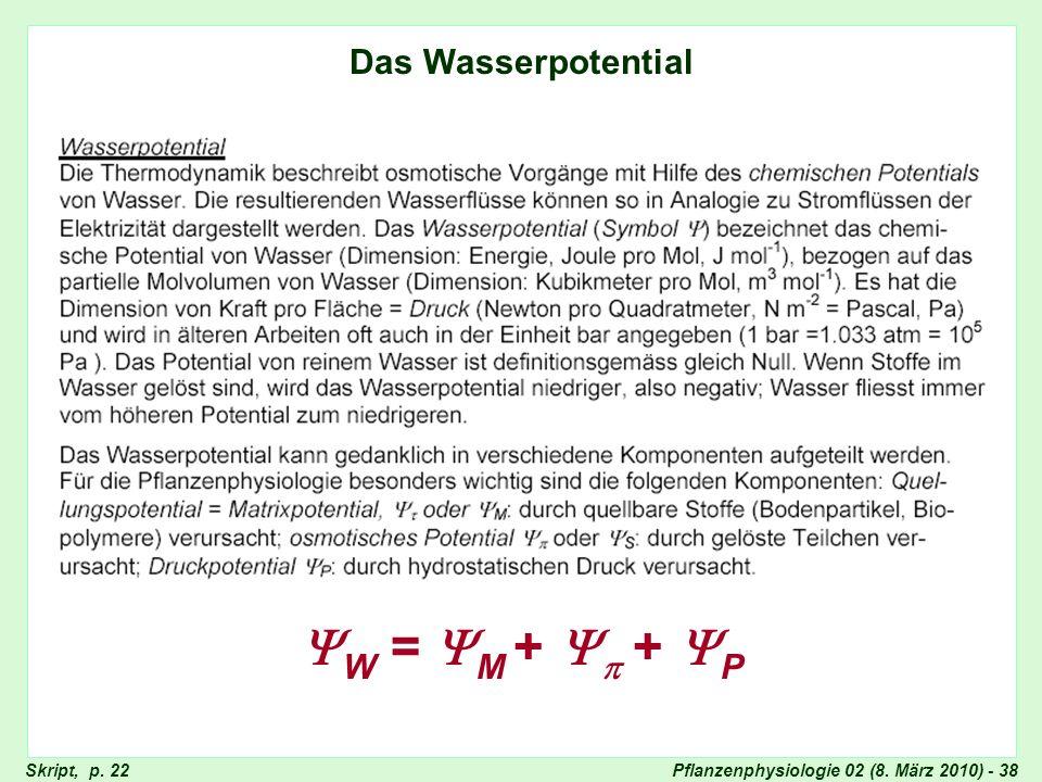 Pflanzenphysiologie 02 (8. März 2010) - 38 Wasserpotential Das Wasserpotential W = M + + P Skript, p. 22