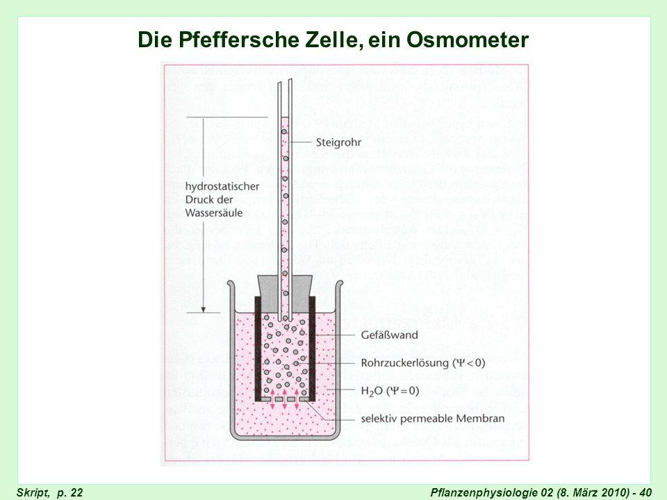 Pflanzenphysiologie 02 (8. März 2010) - 40 Die Pfeffersche Zelle, ein Osmometer Pfeffersche Zelle Skript, p. 22