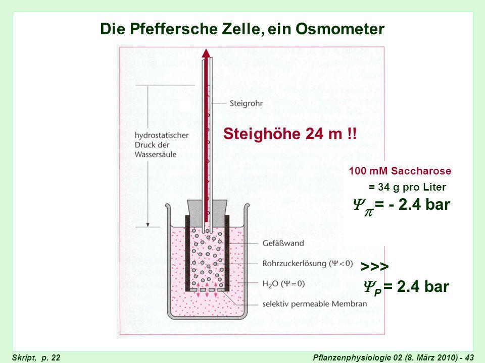 Pflanzenphysiologie 02 (8. März 2010) - 43 Die Pfeffersche Zelle, ein Osmometer Pfeffersche Zelle = - 2.4 bar 100 mM Saccharose = 34 g pro Liter >>> P