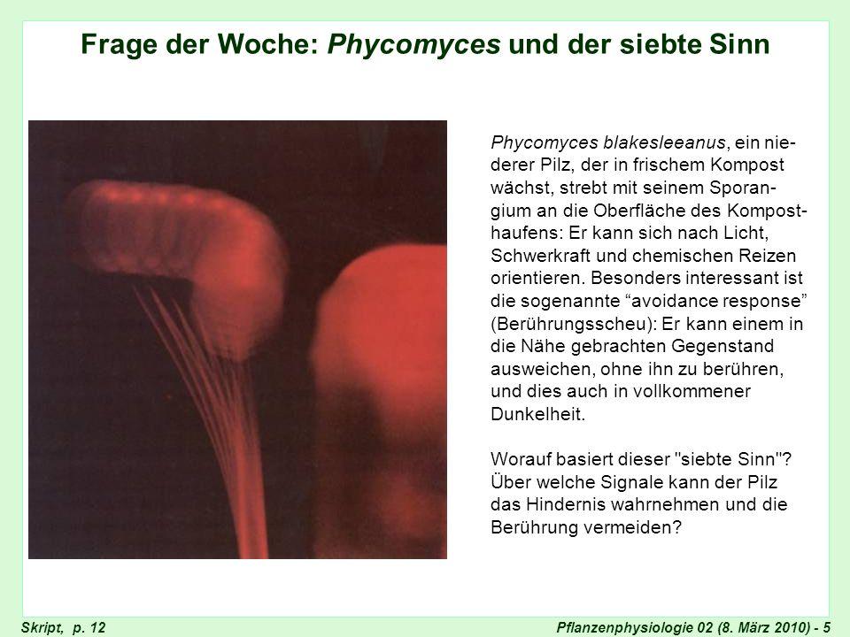Pflanzenphysiologie 02 (8. März 2010) - 5 Frage der Woche: Phycomyces und der siebte Sinn Phycomyces blakesleeanus, ein nie- derer Pilz, der in frisch