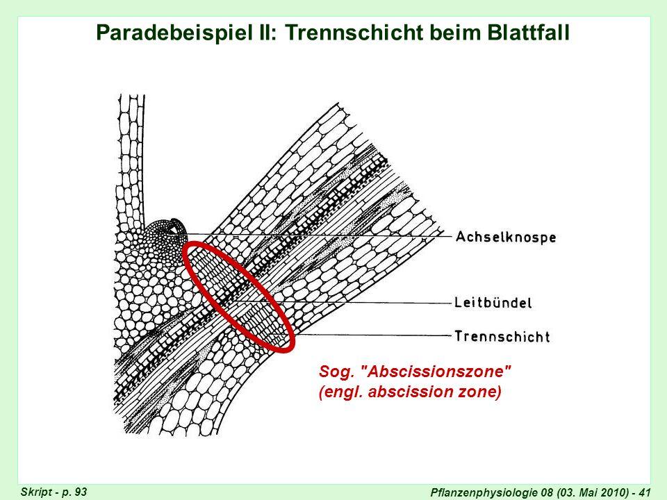 Pflanzenphysiologie 08 (03. Mai 2010) - 41 Paradebeispiel II: Trennschicht beim Blattfall Seneszenz-Typen Sog.