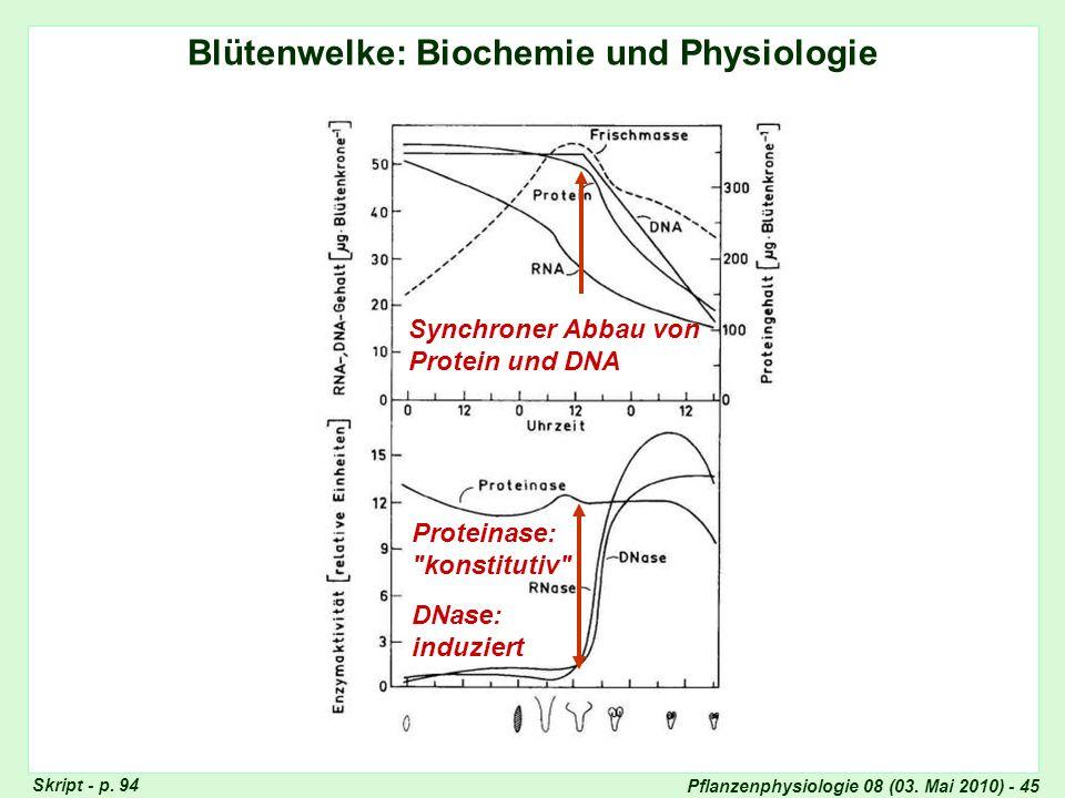Pflanzenphysiologie 08 (03. Mai 2010) - 45 Blütenwelke: Biochemie und Physiologie Synchroner Abbau von Protein und DNA Proteinase: