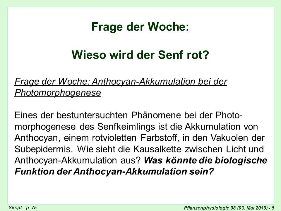 Pflanzenphysiologie 08 (03. Mai 2010) - 5 Frage der Woche: Wieso wird der Senf rot? Frage der Woche: Anthocyan-Akkumulation bei der Photomorphogenese