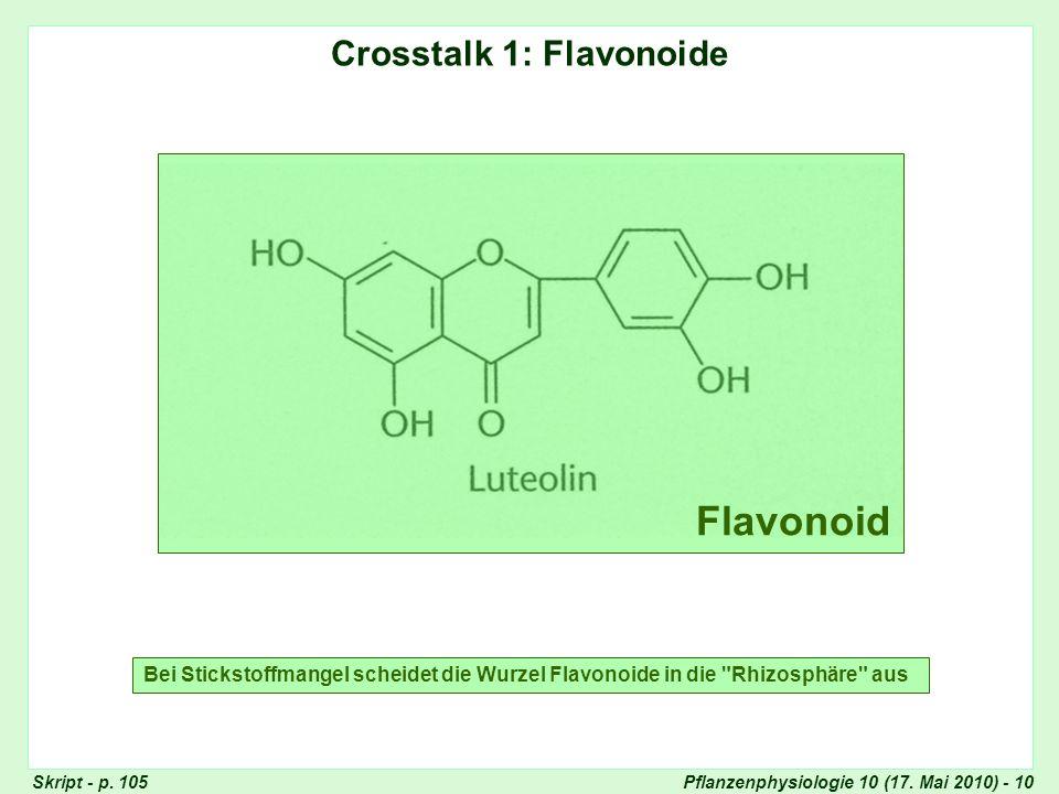 Pflanzenphysiologie 10 (17.Mai 2010) - 10 Crosstalk 1: Flavonoide Skript - p.