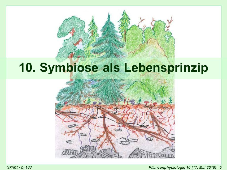 Pflanzenphysiologie 10 (17.Mai 2010) - 5 10.
