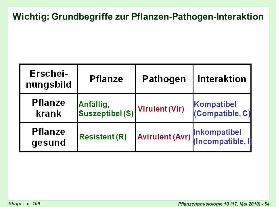 Pflanzenphysiologie 10 (17.