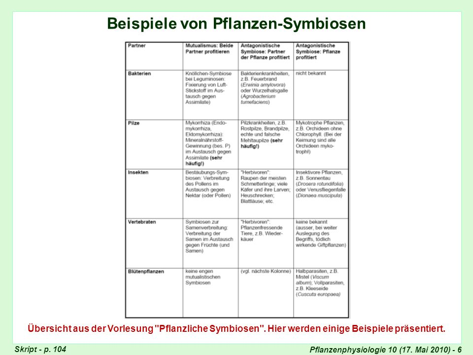 Pflanzenphysiologie 10 (17.Mai 2010) - 47 Sudden Oak Death in den U.S.A.