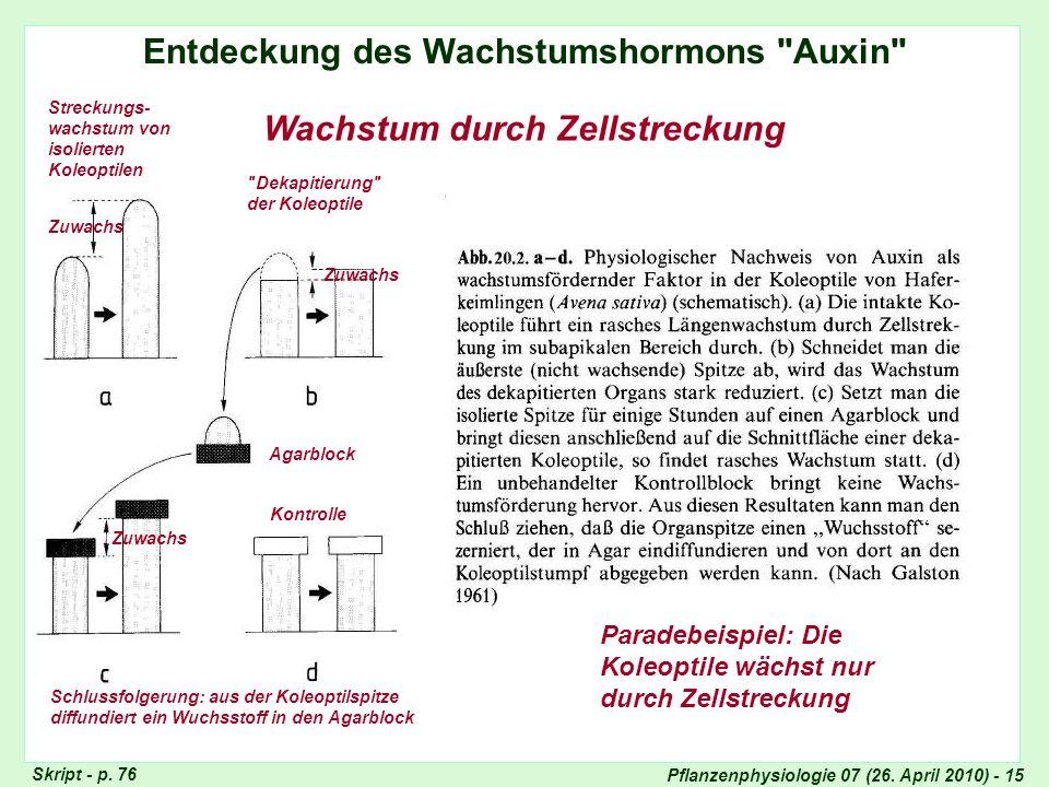Pflanzenphysiologie 07 (26. April 2010) - 15 Entdeckung des Wachstumshormons