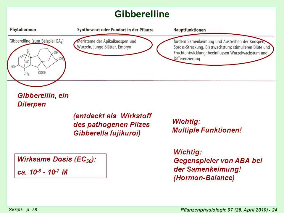 Pflanzenphysiologie 07 (26. April 2010) - 24 Gibberelline Totipotenz der Pflanzenzellen Skript - p. 78 Gibberellin, ein Diterpen (entdeckt als Wirksto