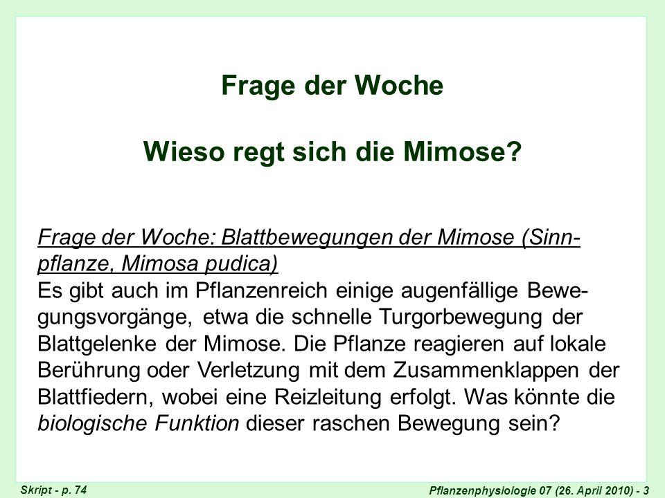 Pflanzenphysiologie 07 (26. April 2010) - 3 Frage der Woche Wieso regt sich die Mimose? Frage der Woche: Blattbewegungen der Mimose (Sinn- pflanze, Mi