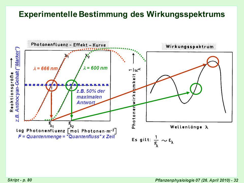 Pflanzenphysiologie 07 (26. April 2010) - 32 Experimentelle Bestimmung des Wirkungsspektrums z.B. Anthocyan-Gehalt (
