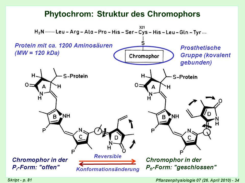 Pflanzenphysiologie 07 (26. April 2010) - 34 Phytochrom: Struktur des Chromophors Protein mit ca. 1200 Aminosäuren (MW = 120 kDa) Prosthetische Gruppe