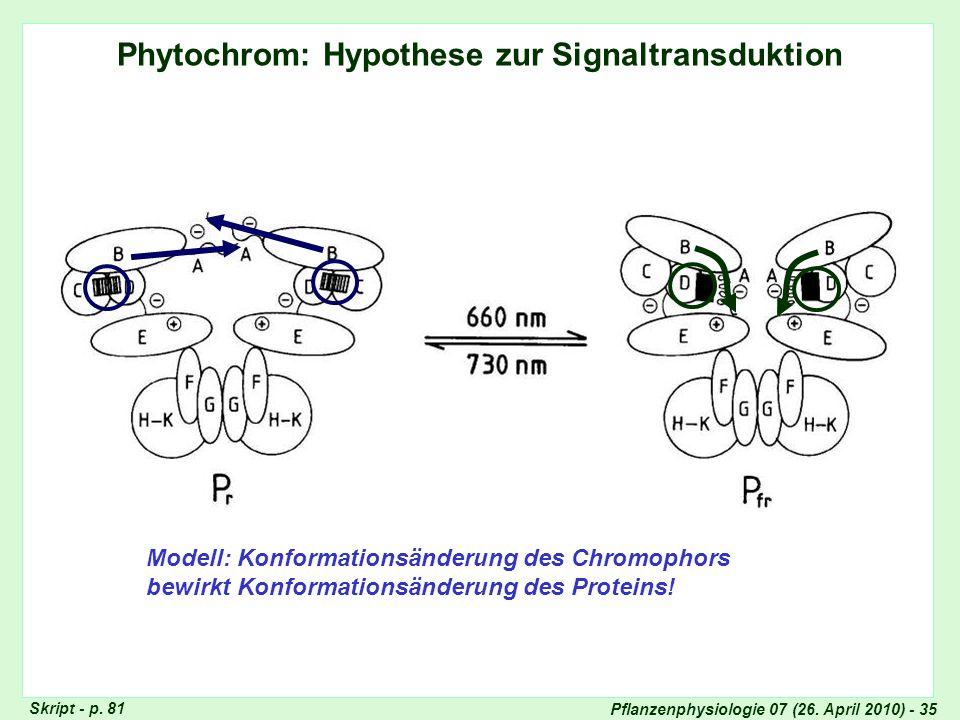Pflanzenphysiologie 07 (26. April 2010) - 35 Phytochrom: Hypothese zur Signaltransduktion Modell: Konformationsänderung des Chromophors bewirkt Konfor