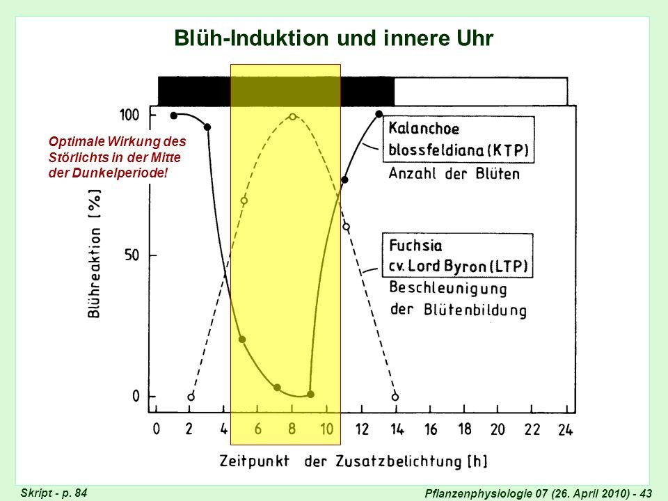 Pflanzenphysiologie 07 (26. April 2010) - 43 Blüh-Induktion und innere Uhr Optimale Wirkung des Störlichts in der Mitte der Dunkelperiode! Skript - p.